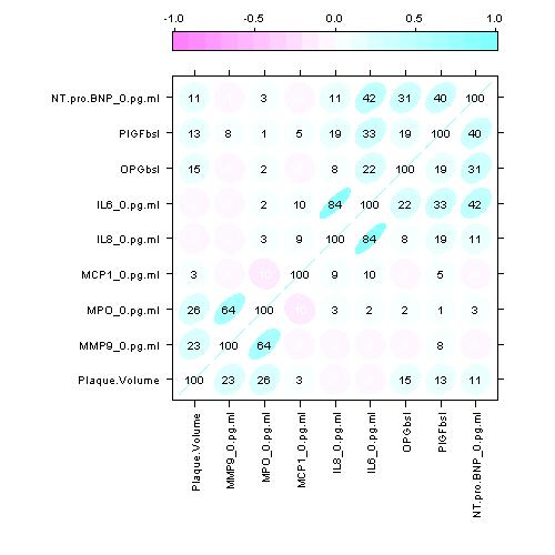Correlation matrix - ellipse